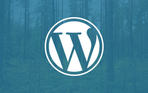 themeforest-wordpress-theme